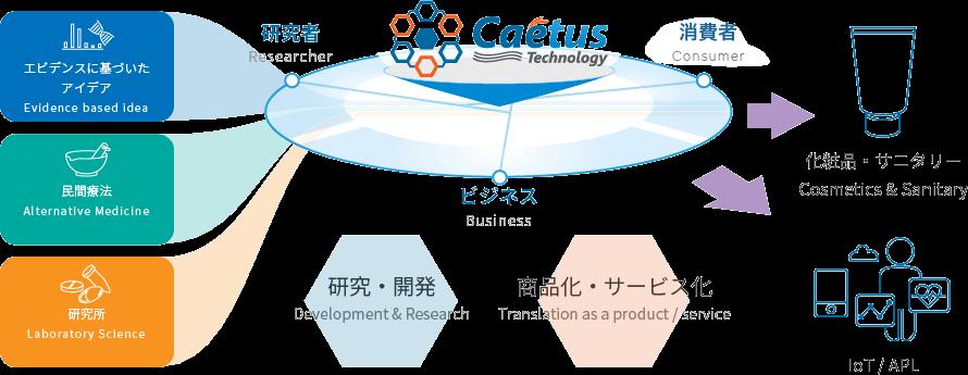 開発領域・主なテーマ図